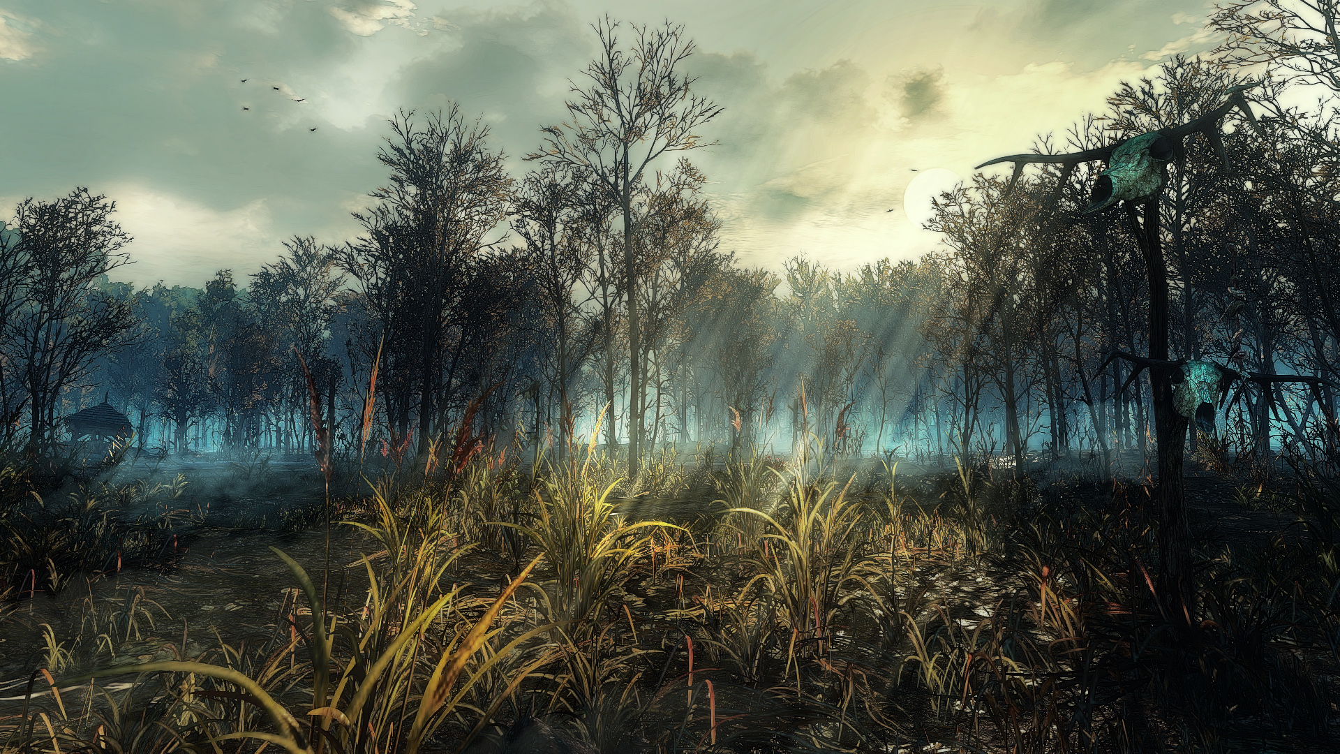 Crookback Bog
