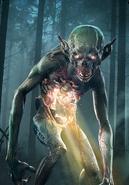 Tw3 cardart monsters foglet