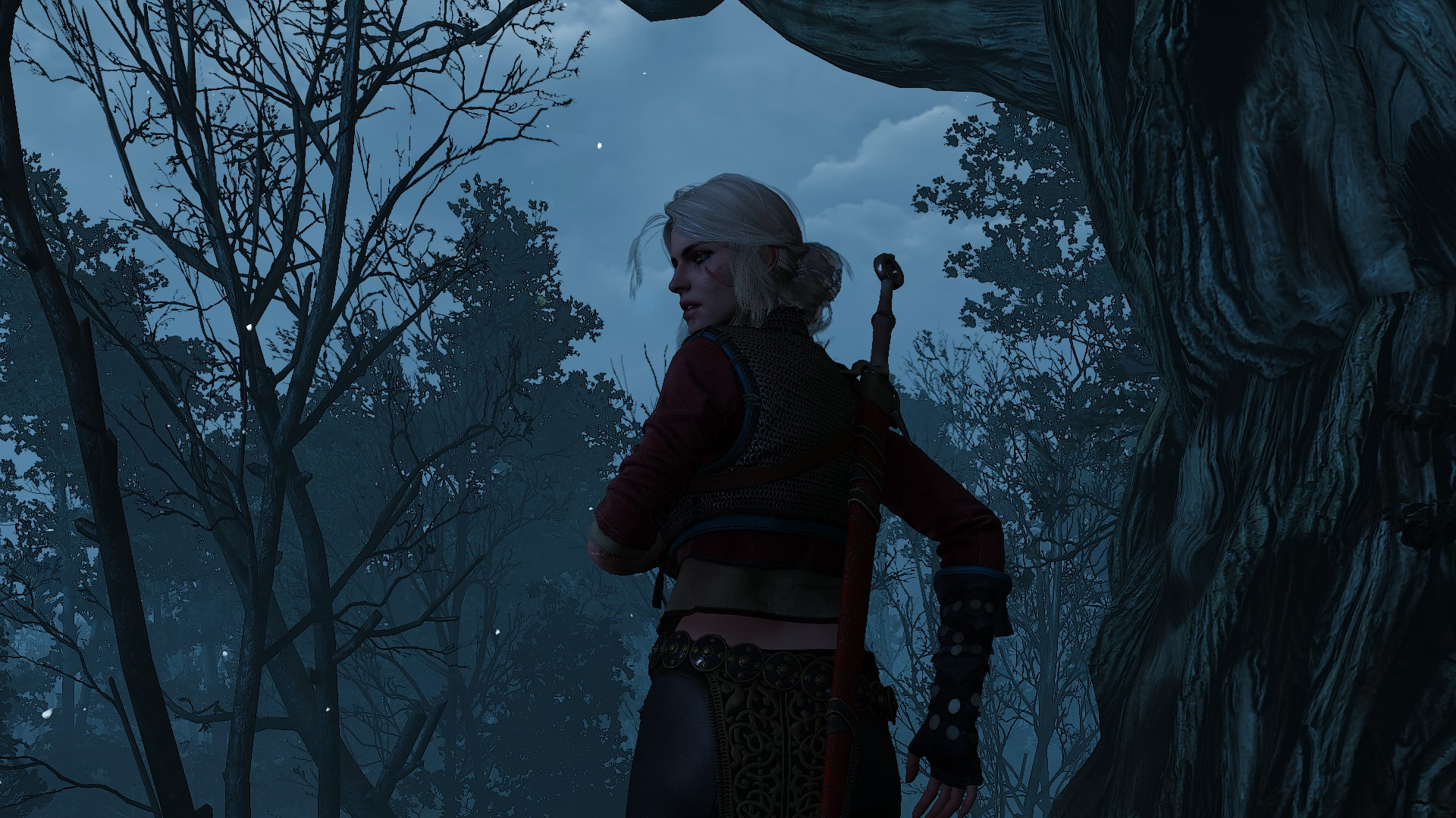 Ciri's Story: Fleeing the Bog