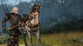Tw nilfgaardian-armor-dlc.jpg
