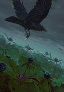 Gwent cardart neutral crows eye