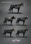 Nilfgaardian armor set concept art