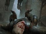 Catriona plague