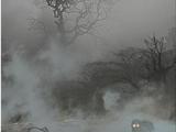Impenetrable Fog (gwent card)