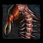 Bestiary Giant Centipede