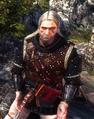 Tw2 screenshot armor zireael