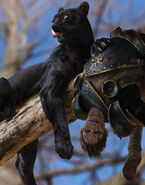 Gwent cardart scoiatael panther