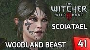Witcher 3 Contract Scoia'Tael Elves, the Woodland Beast - Story & Gameplay 41 PC