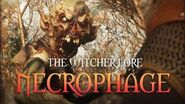 What are Necrophages? The Witcher 3 Lore - Necrophages