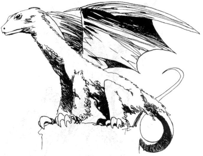 Ornitodracon