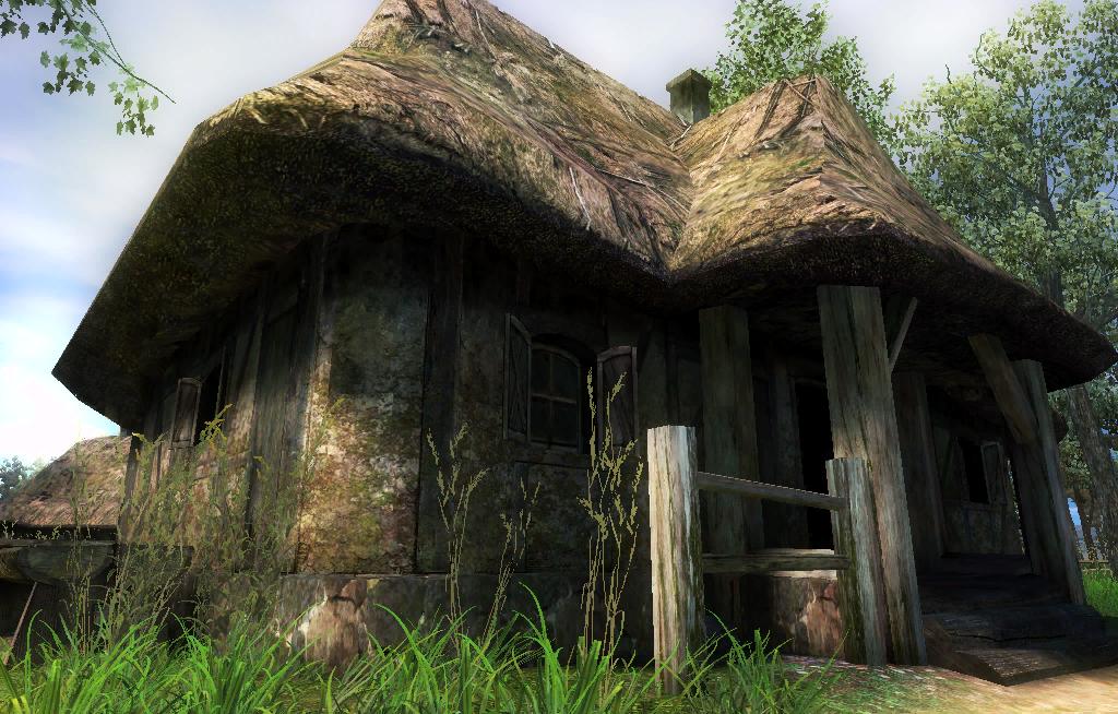 Witcher's hut