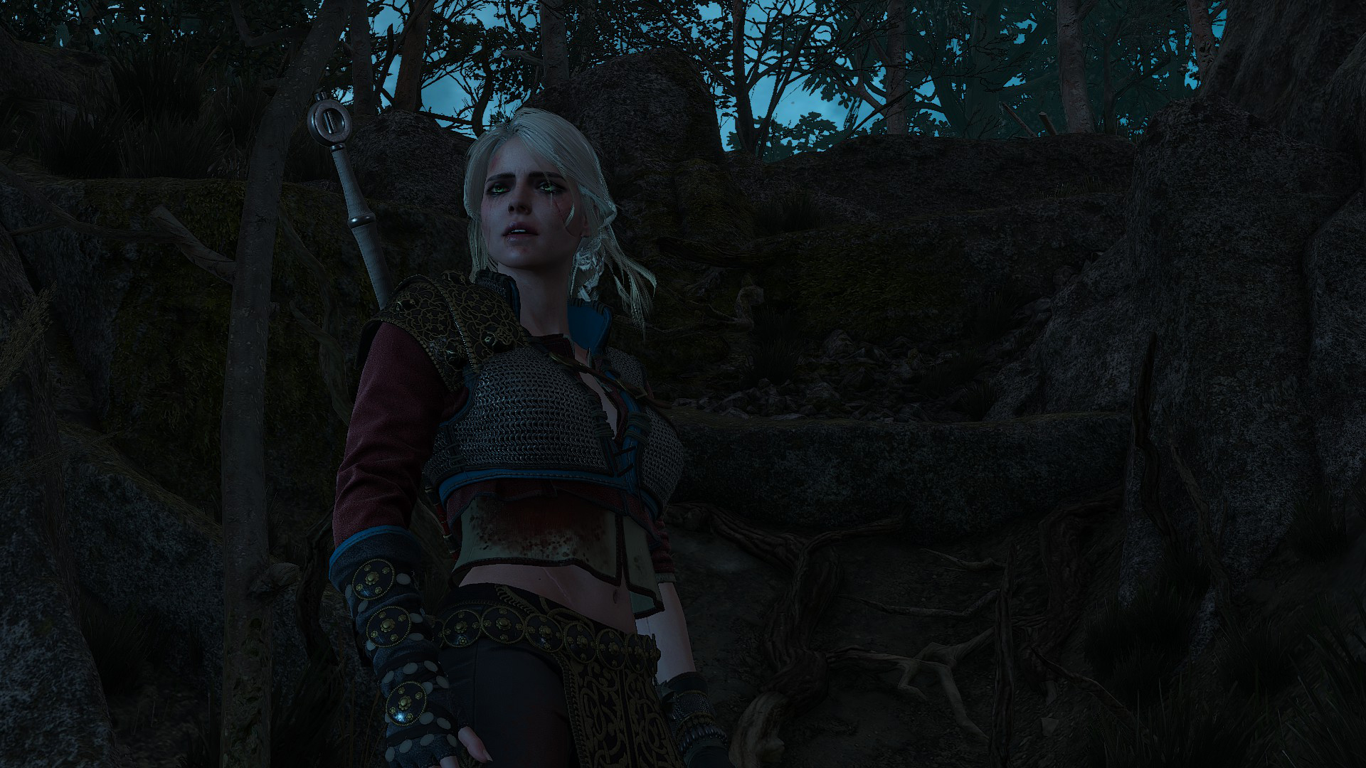 Ciri's Story: The King of the Wolves