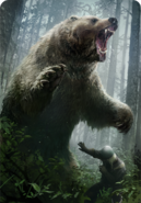 Tw3 cardart skellige berserker bear