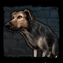 Bestiary Dog