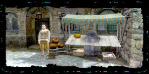 Obchodník z venkova