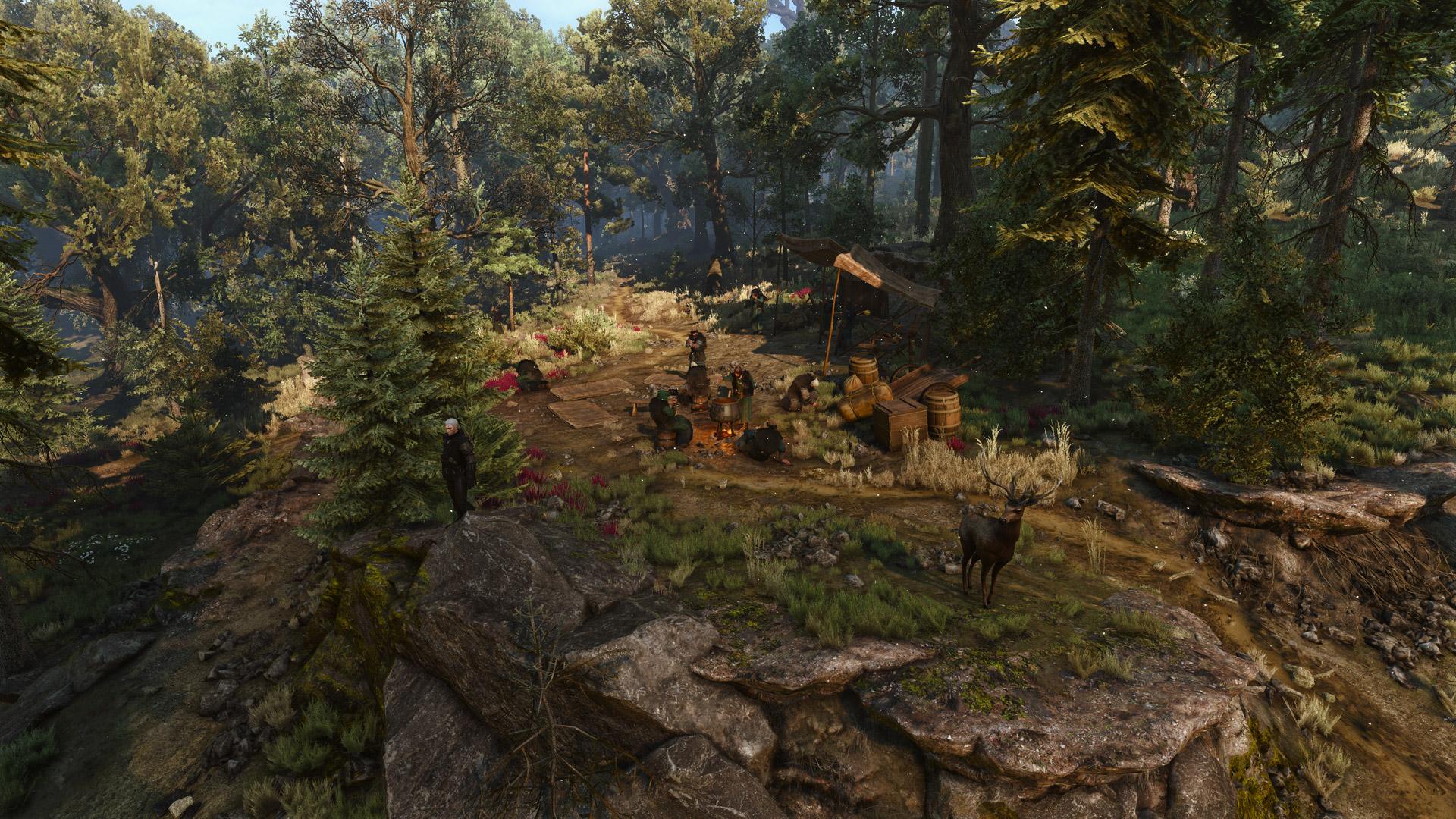 Druids' Camp