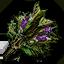 Hjort's herbs