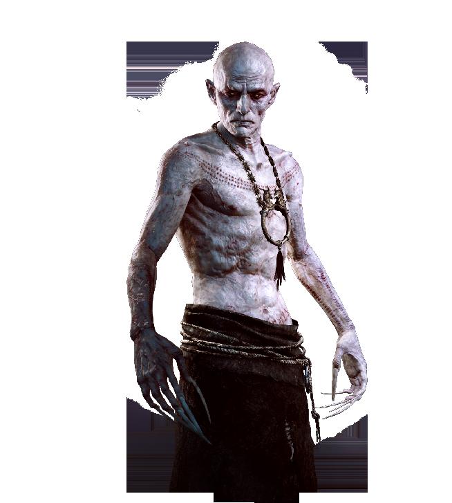 The Unseen Elder