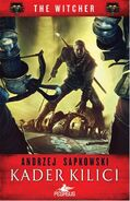 Sword and Destiny - turkish cover