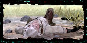 Γκέραλτ, unconscious