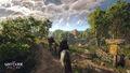 The Witcher 3 Wild Hunt-Crossroads.jpg