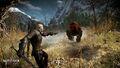 Tw3 e3 2014 screenshot - Geralt shooting his crossbow.jpg