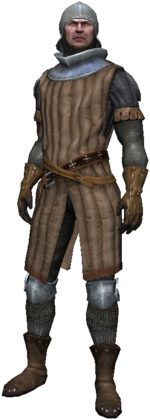Torch Guardian