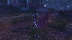 Tw3 baw equine phantoms (5).jpg