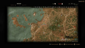 Witcher 3 Coast of Wrecks.jpg