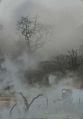 Tw3 cardart special fog.png