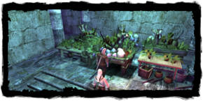 Places Witchers lab herbs.png