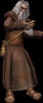 Elder druid