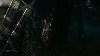 Tw3 lord of the wood.jpg