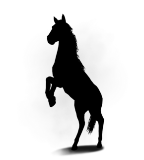 Tw3 journal nightmare horse locked.png