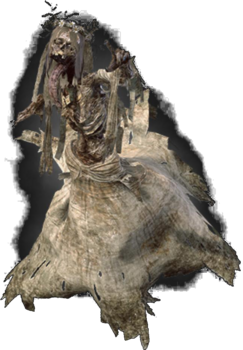 Tw3 noonwraith.png