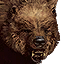 Tw3 bestiary icon bear.png