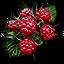 Tw3 raspberries.png