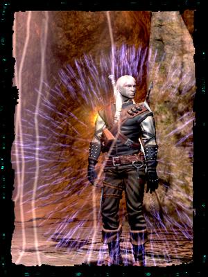 Geralt, using Alzur's shield