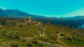 Tw3 bw castel ravello vineyard.jpg