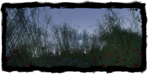 Places Fields.png