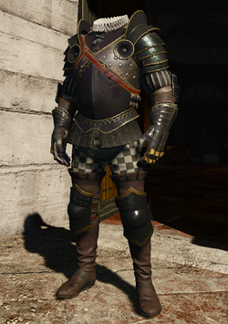 W3 Nilfgaardian Guard Armor.png