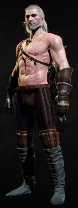 Tw3 armor knights gauntlets trappers boots.png
