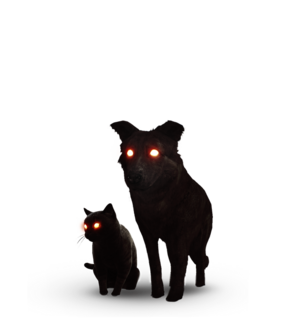 Tw3 journal black cat and dog.png