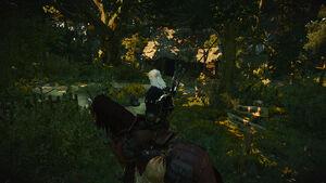 Witcher 3 Forest Hut (2).jpg
