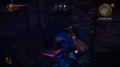 Tw2-wraith-04.png