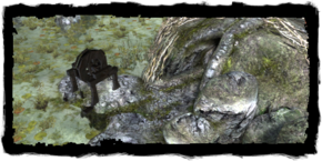 Places Old Mine.png