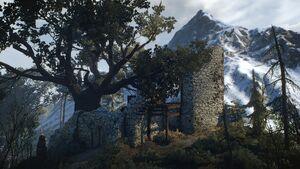 Old Watchtower