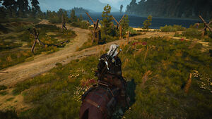 Witcher 3 Hangman's Alley (2).jpg