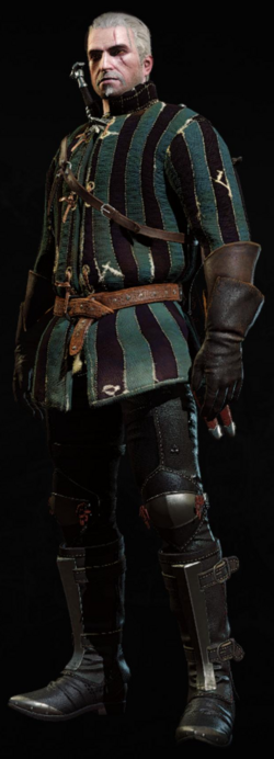 Tw3 armor cidarian gambeson.png