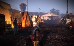 Tw2-screenshot-kaedweni-camp-03.png